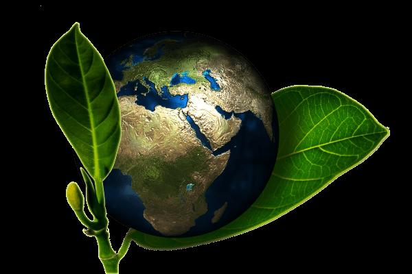 Respect de la planète
